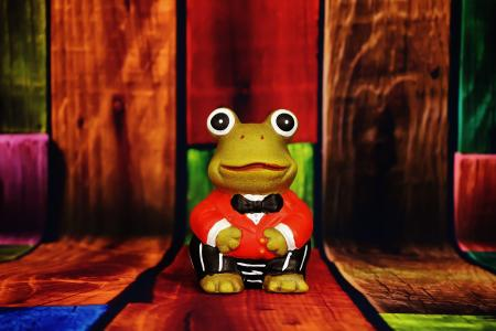 青蛙, 图, 有趣, 西装, 可爱, 装饰, 绿色