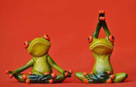 青蛙, 图, 瑜伽, 体操, 有趣, 青蛙, 绿色