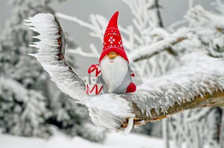 圣诞老人, 圣诞主题, 图, 尼古拉斯, 进出口有限公司, 礼品, 冬天