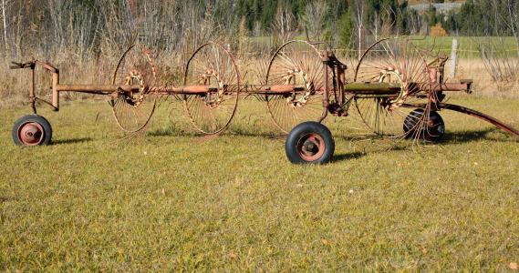 干草草机, 干草, 草, 面板, 农业, 收获, 田野调查