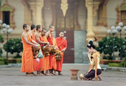 和尚, 我祈祷, 曼谷, 亚洲, 的符号, 相信, 佛