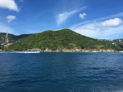 岛屿, 树, 水, 热带, 度假