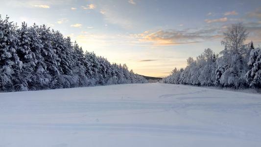 寒冷, 拉普兰, 瑞典, 雪景, 冬天, 雪, 自然