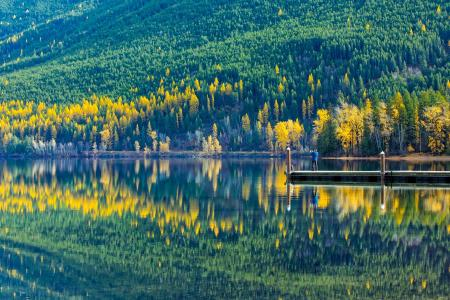 麦当劳湖, 冰川国家公园, 蒙大拿州, 景观, 森林, 树木, 伍兹