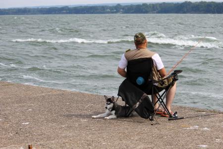 男子, 狗, 鱼, 捕鱼, 水背景, 宠物, 动物