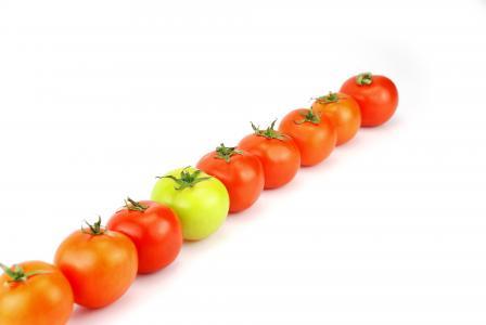 que, 番茄, 食品, 蔬菜, 绿色, 红色, 白色背景