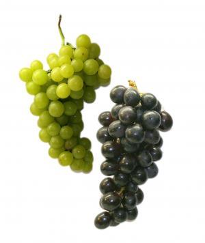 餐桌葡萄, 葡萄, 水果, 健康, 绿色, 蓝色, 食品