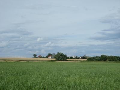 景观, 字段, 村庄, 天空