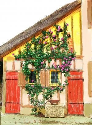 房子, 葡萄藤, 玫瑰, 法国