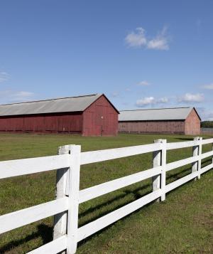 谷仓, 烟草, 栅栏, 农场, 农村, 农业, 年份
