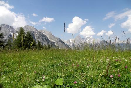 上奥地利, 白云石面团, 假日, 旅行, 景观, 全景, 山脉