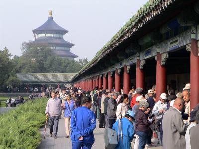 天天公园, 纸牌游戏, 戏剧, 中国, 人类, 个人, 北京