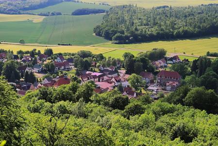 景观, 村庄, 字段, 森林