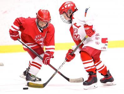 曲棍球, 船长, 冰球, 曲棍球棒, 体育, 冬季运动, 冬天