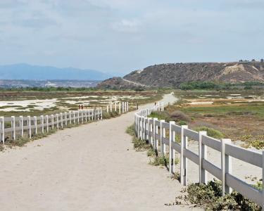 海滩, 路径, 圣地亚哥, 海岸, 沙子, 海洋, 夏季
