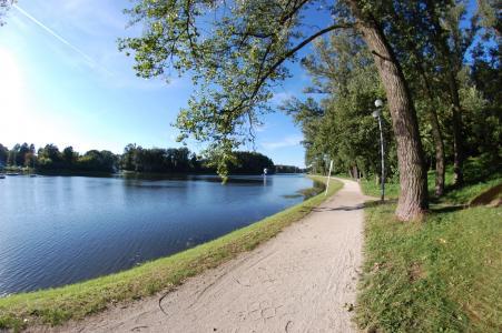 路径, 湖, 线索, 景观, 绿色, 夏季, 凯尔采