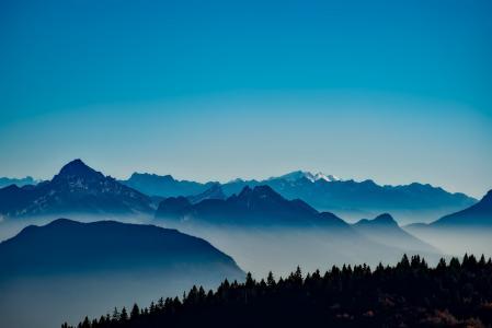 法国, 山脉, 雾, 雾, 日出, 森林, 树木