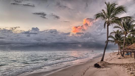海滩, 多米尼加共和国, 多米尼加共和国, 加勒比海, 夏季, 海, 热带