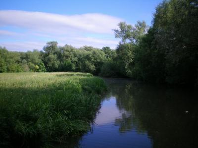 牛津大学, 英格兰, 河, 自然, 景观, 字段