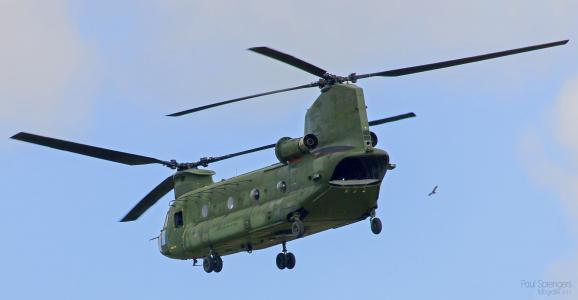 军事, 直升机, 军队, 飞