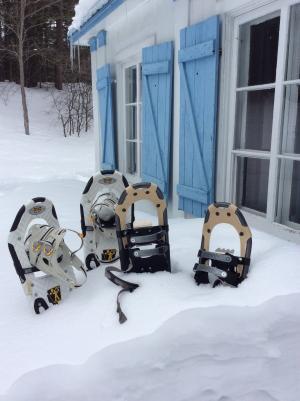 雪地鞋, 雪, 放松, 冬天, 室外冷, 赛季, 旅行