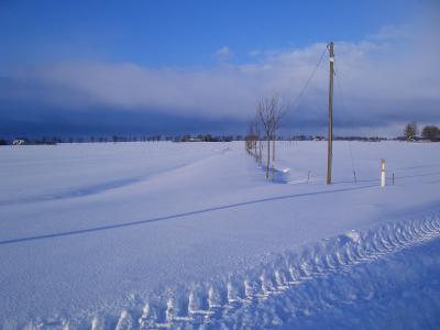 冬天, 走了, 寒冷, 不可能, 在望, 天空蓝, 白雪公主
