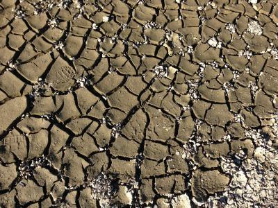 地面, 地球, 破解, 干燥土壤, 脱水, 裂缝