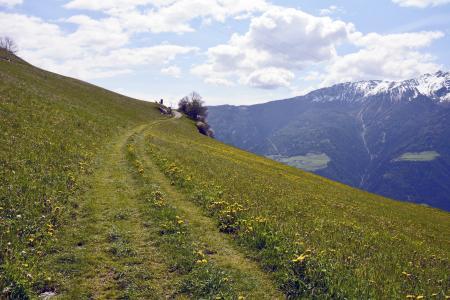 线索, 走了, 草甸, 自然, 徒步旅行, 景观, 山脉