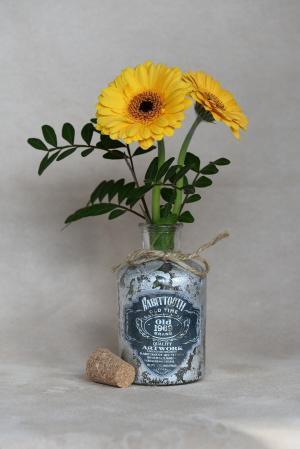 花, 非洲菊, 橙色, 橙花, 花瓶, dekovase, 德科