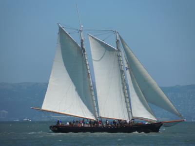 帆船, 小船, 水, 湾, 帆船, 帆, 天空