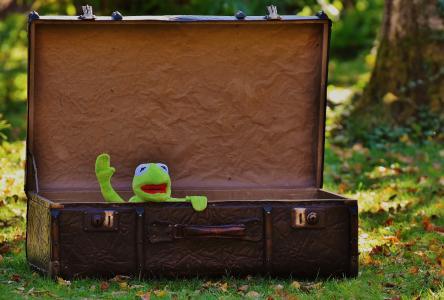 克米特, 告别, 可爱, 儿童, 有趣, 甜, 行李