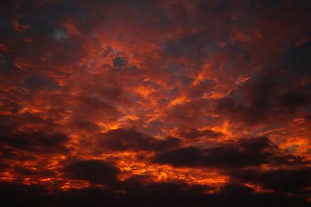 阳光, 新光, 充满活力, 云计算, 风暴, 视图, 白天