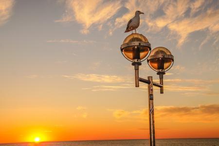 日落, 海, 傍晚的天空, 波罗地海, abendstimmung, 海鸥, 浪漫