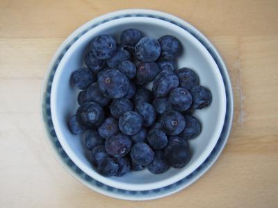 蓝莓, 水果, 越桔, 美味, 重要物质