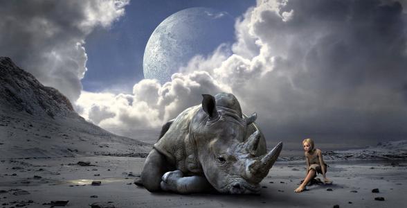 心情, 景观, 犀牛, 幻想, 光, 山脉, 行星