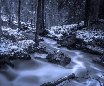 森林, 溪, 冬天, 瑞典自然, 克里克, hdr, 瑞典