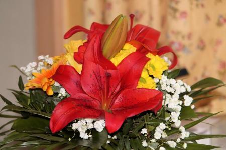 束鲜花, 百合, 光明, 花, 花瓣
