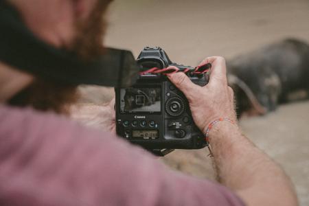 相机, 单反相机, 镜头, 黑色, 摄影, 表带, 模糊