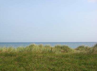 沙丘, 沙丘草, 波罗地海, 海