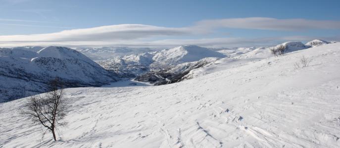 挪威, 请, 冬天, 雪, 山, 景观, 自然