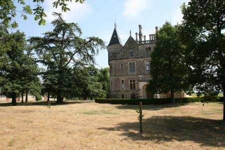 城堡, 法国, 老, 城堡, 建筑, 户外