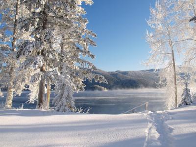 canim 湖, 冬天, 冰, 感冒, 雪, 水, 湖