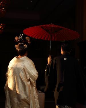 成人, 后视图, 仪式, 夫妇, 文化, 节日, 礼服