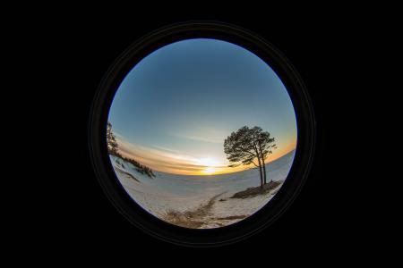 树, 树木, 日落, 太阳, 天空, 云彩, 海
