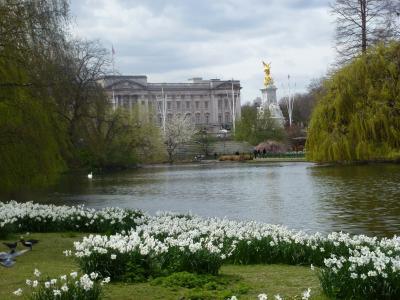 花, 伦敦, 公园, 英格兰, 英国, 旅行, 联合王国