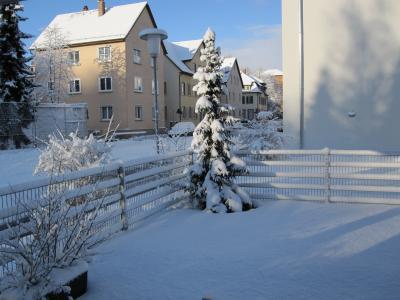 冬天, 雪, 首页