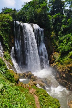 景观, 白内障, 河, 水, 森林, 洪都拉斯, 瀑布