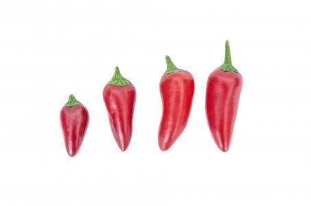 辣椒, 特写, 烹饪, 食品, 热, 热, 成分