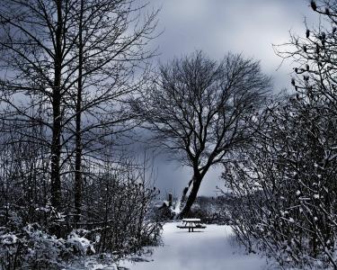 冬日风光, 雪凳, 黑暗的天空