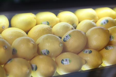 柠檬, 展览, 内置, 水果, 柑橘, 食品, 新鲜
